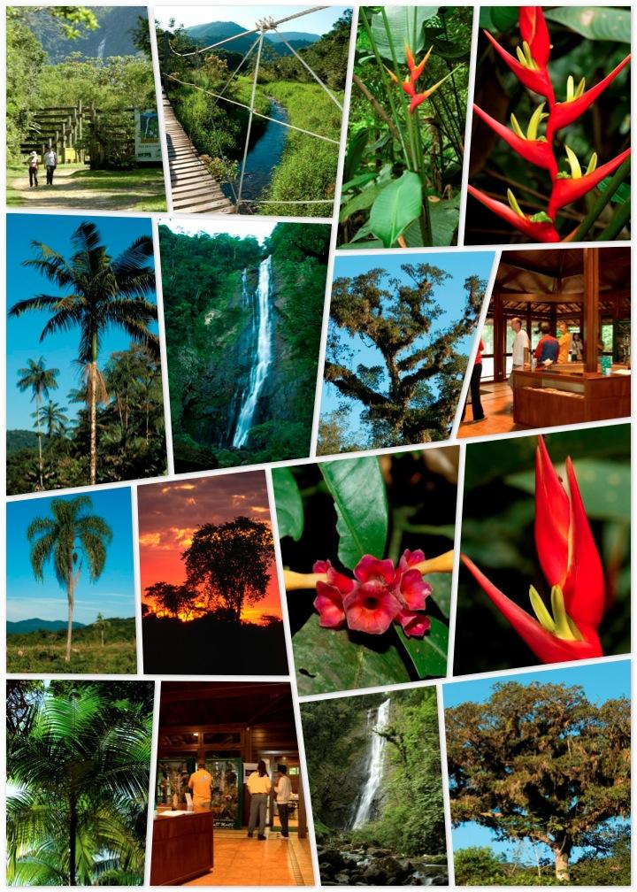 O boticário paraná reserva natureza