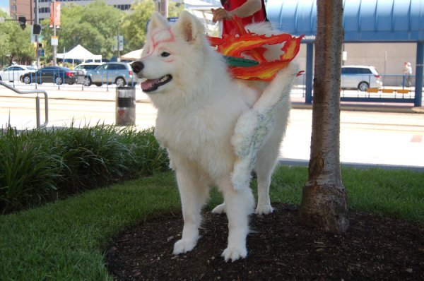 Amaterasu, do game Okami Cosplay