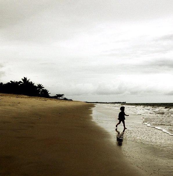 Costa Brasilis 03