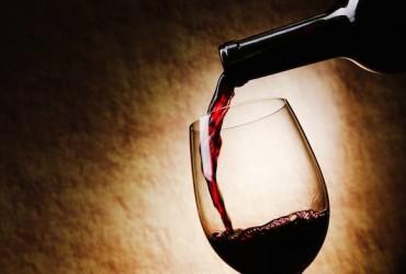 ciência do vinho