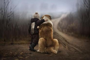 Cachorros e Padawans - Uma relação linda de se ver 01