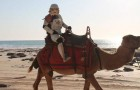 O uniforme dos Stormtroopers são à prova de cobra4