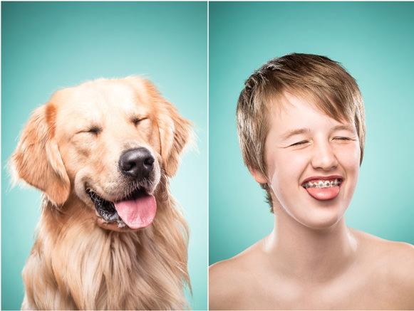 Cachorros e suas expressões 01