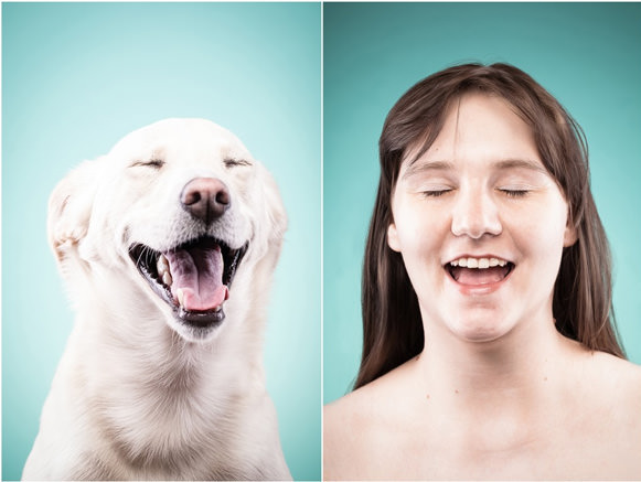 Cachorros e suas expressões 05