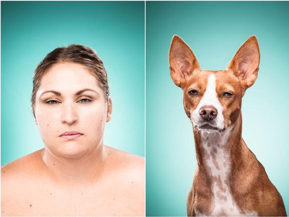 Cachorros e suas expressões 04