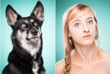 Cachorros e suas expressões 06