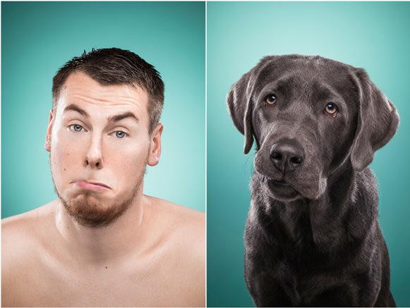 Cachorros e suas expressões 10