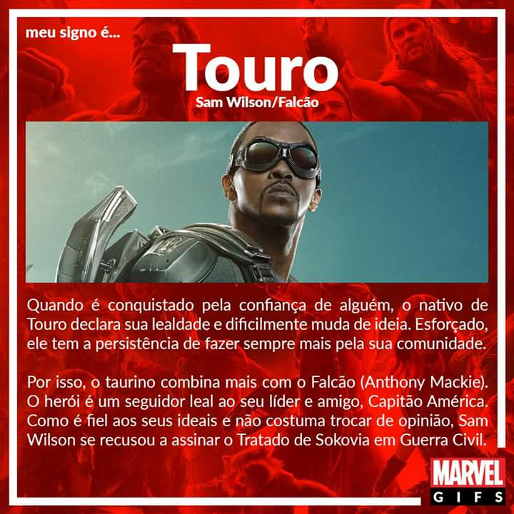 02 Touro Falcão