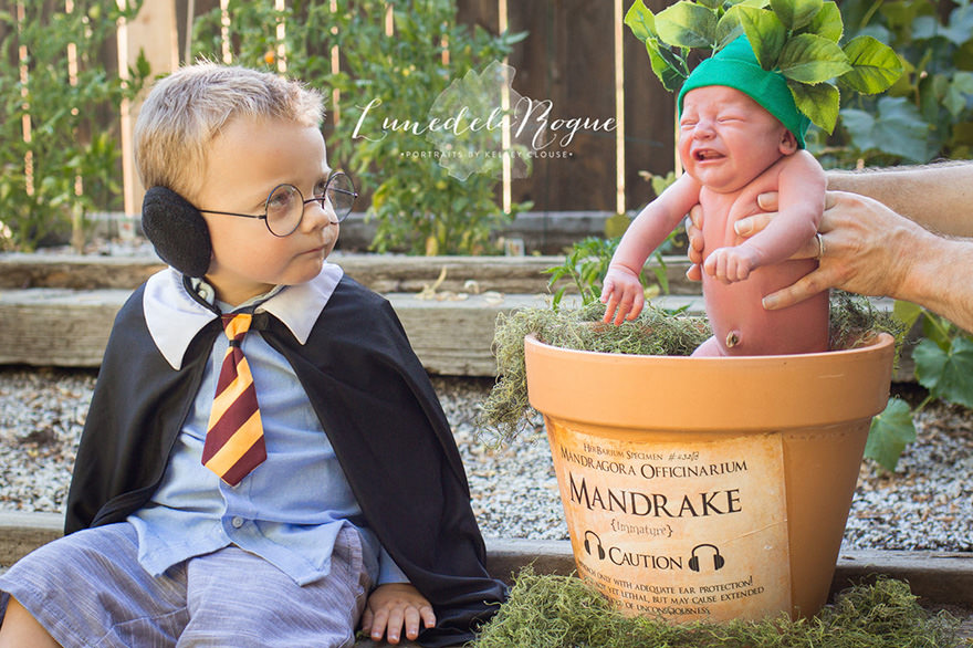 Fotografia Newborn Harry Potter 03