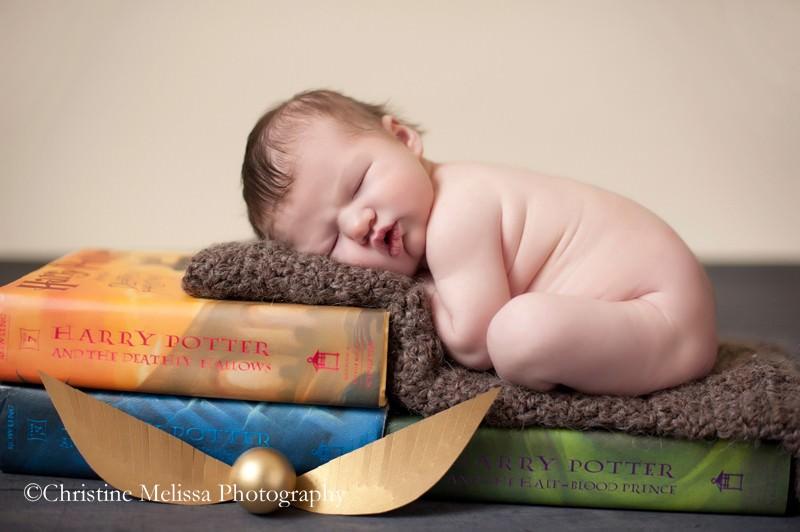 newborn harry potter np 14