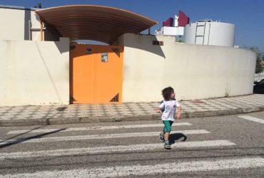 atravessando-a-rua-maio-amarelo
