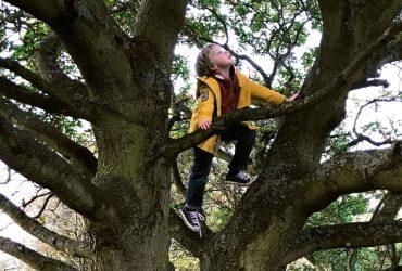 6 tipos de brincadeiras arriscadas que ajudam no desenvolvimento das crianças 1